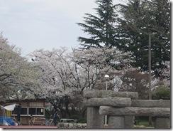 粟島公園1