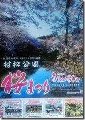 2017村松桜まつり (2)
